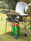 Weber Q200 Gas Barbecue