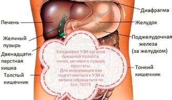 УЗИ_брюшной_полости