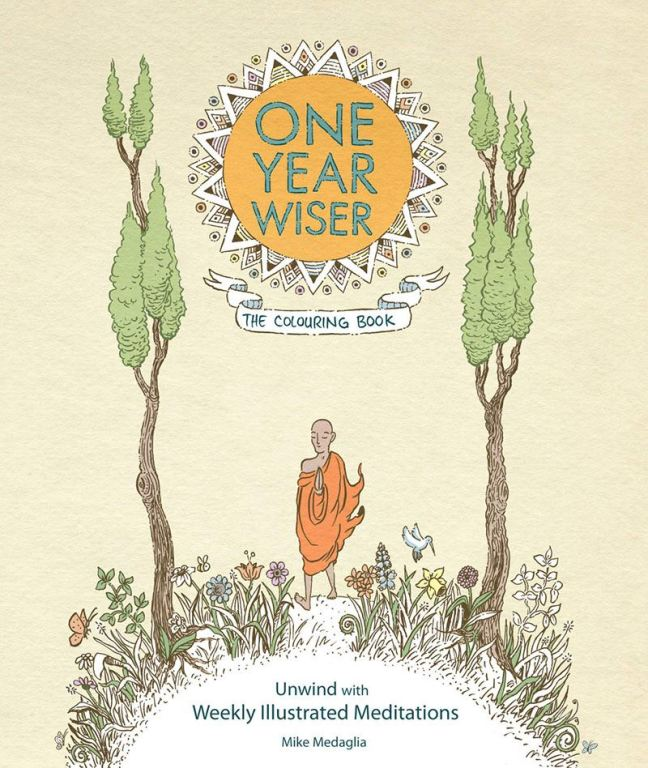 One-Year-Wiser Cover by Mike Medaglia.jpg