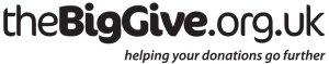 the-big-give-logo