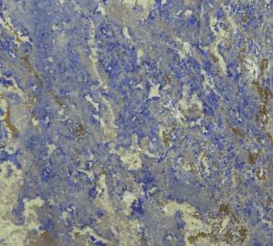 Riviera Blue marble