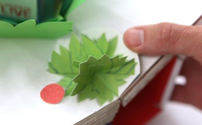 # 探索 LACOSTE L!VE 男士極刻活力淡香水的奧秘:手工立體書展示年輕和活力 10