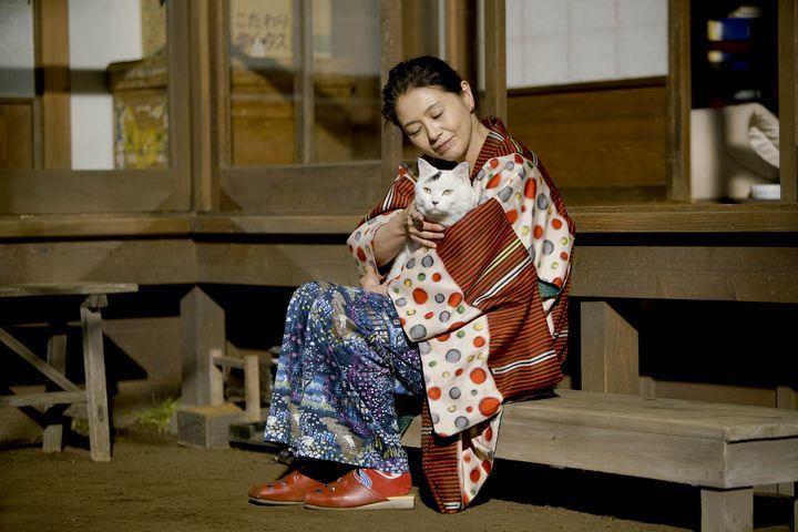 # 澤尻英龍華、前田敦子等人領銜主演:《姐姐的私廚》即將在台上映 5
