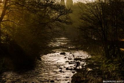 december_river_trip-8