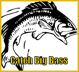 Catch Big Bass