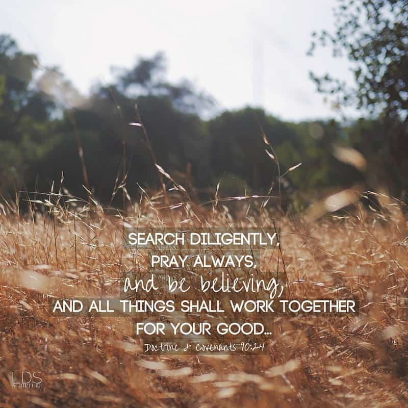 Search diligently, pray always, and be believing, and all things shall work together for your good... Doctrine & Covenants 90:24