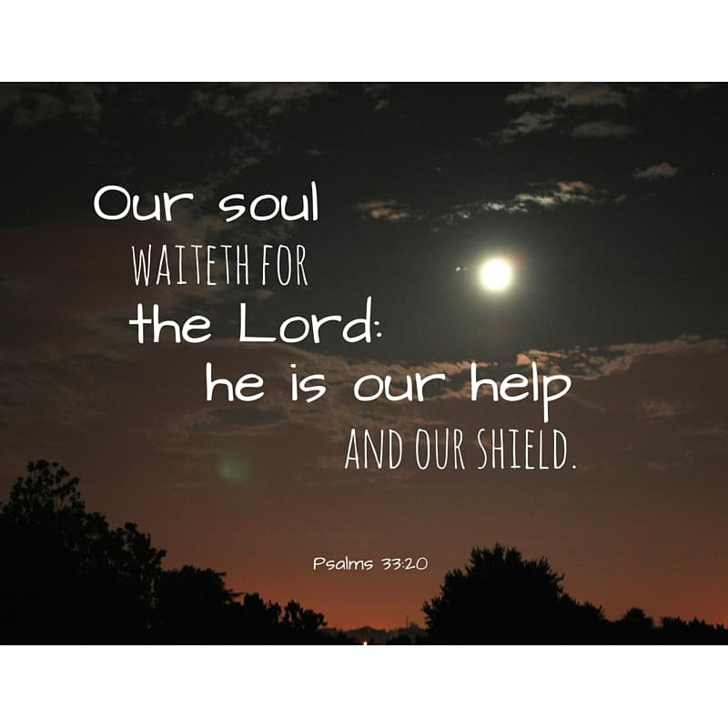 Our soul waiteth for the Lord: he is our help and our shield. Psalms 33:20