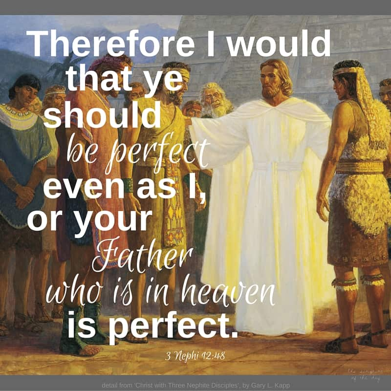 Therefore I would that ye should be perfect even as I, or your Father who is in heaven is perfect. 3 Nephi 12:48