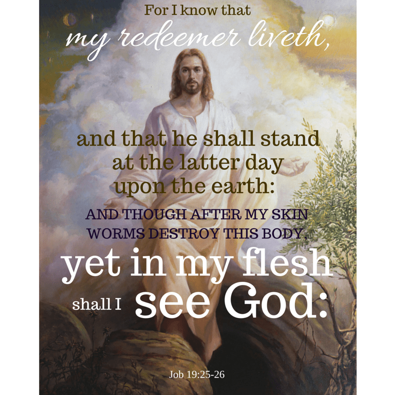 For I know that my redeemer liveth, and that he shall stand at the latter day upon the earth: And though after my skin worms destroy this body, yet in my flesh shall I see God: Job 19:25-26