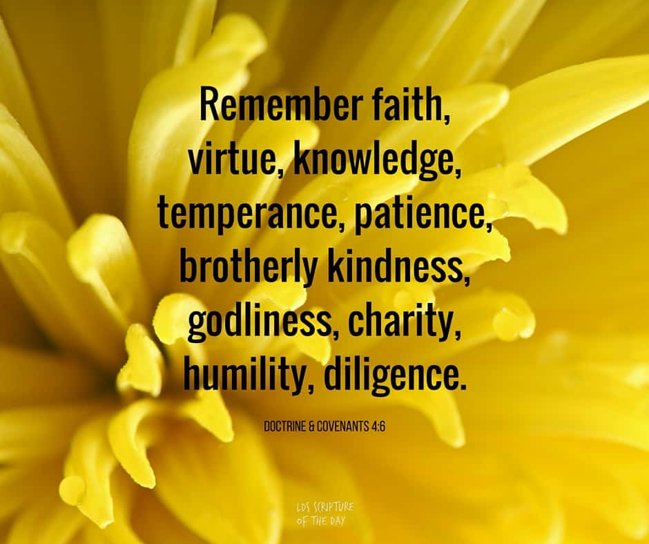 Remember faith, virtue, knowledge, temperance, patience, brotherly kindness, godliness, charity, humility, diligence. Doctrine & Covenants 4:6