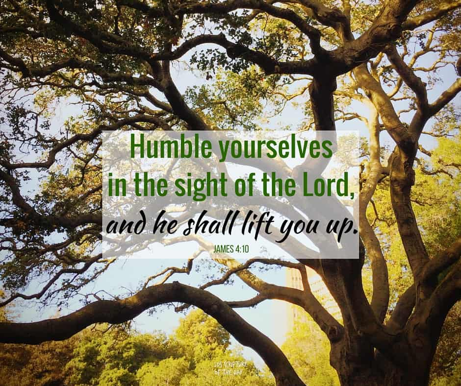 Humble yourselves in the sight of the Lord, and he shall lift you up. James 4:10