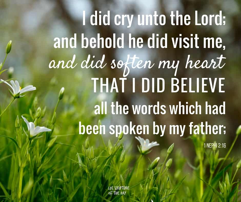 ...I, Nephi, being exceedingly young, nevertheless being large in stature, and also having great desires to know of the mysteries of God, wherefore, I did cry unto the Lord; and behold he did visit me, and did soften my heart that I did believe all the words which had been spoken by my father;... 1 Nephi 2:16