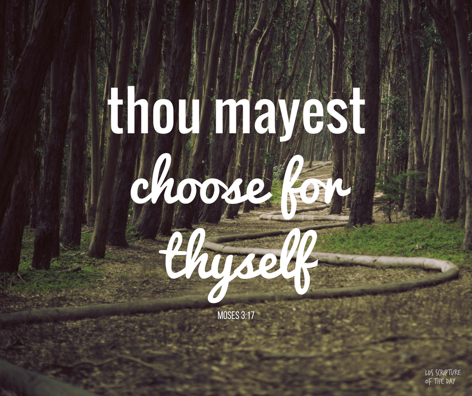 ...thou mayest choose for thyself, for it is given unto thee... Moses 3:17
