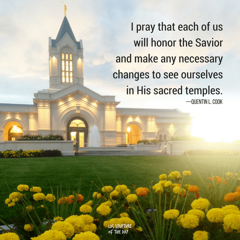 I pray that each of us will honor the Savior and make any necessary changes to see ourselves in His sacred temples. —Quentin L. Cook