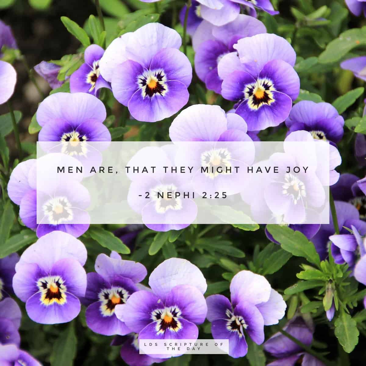 men are, that they might have joy. 2 Nephi 2:25