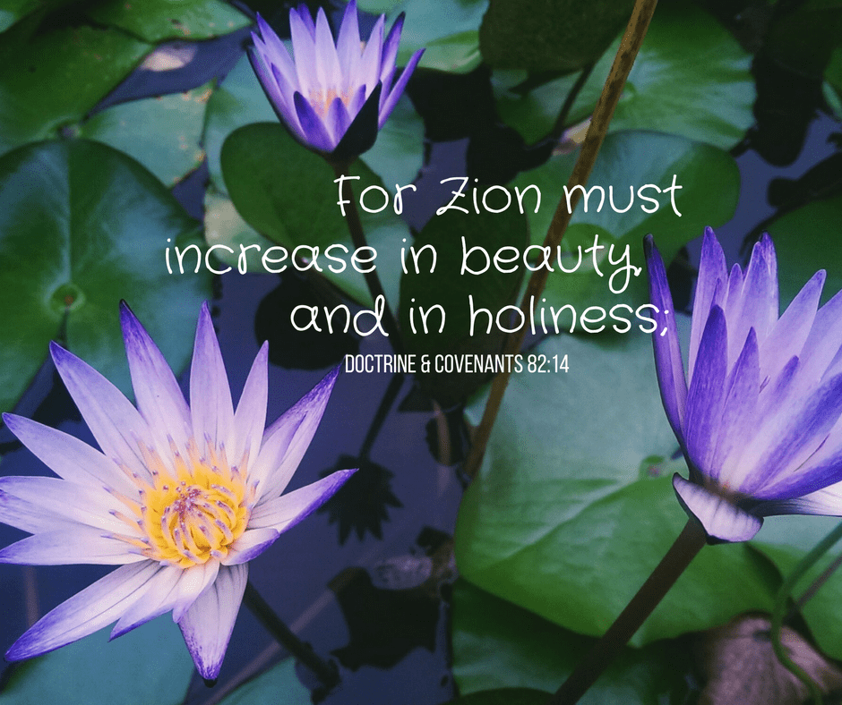 For Zion must increase in beauty, and in holiness; Doctrine & Covenants 82:14