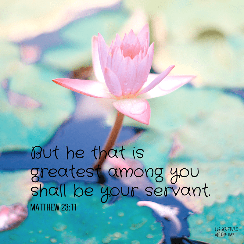 But he that is greatest among you shall be your servant. Matthew 23:11