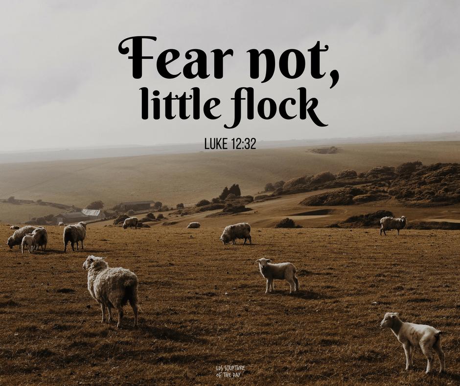 Fear not, little flock - Luke 12:32