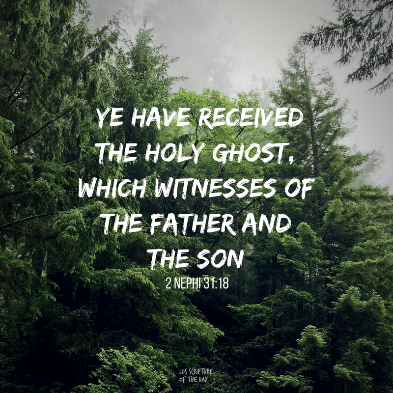 ye have received the Holy Ghost, which witnesses of the Father and the Son —2 Nephi 31:18