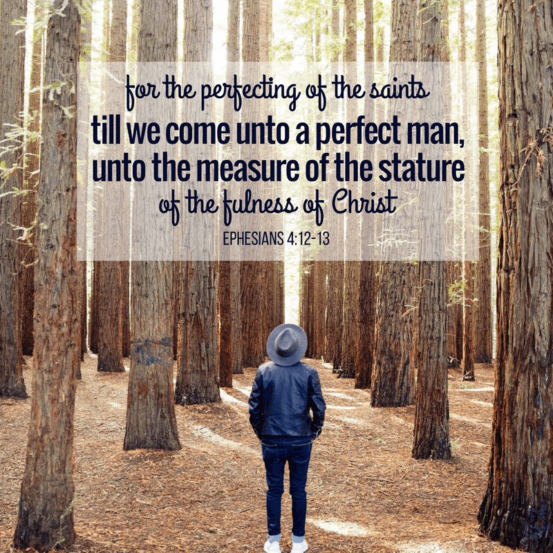 for the perfecting of the saints,...till we...come...unto a perfect man, unto the measure of the stature of the fulness of Christ—Ephesians 4:12-13