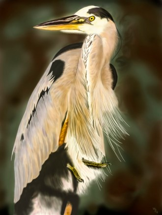 heron (965x1280)