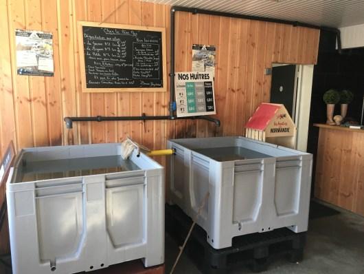 bar à huîtres, les bacs et le menu