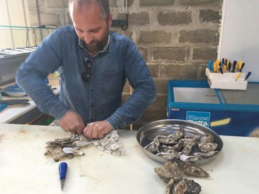 bar à huîtres ouverture