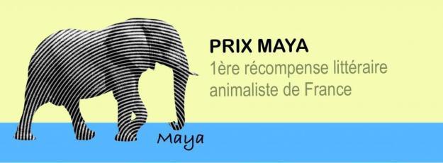 prix maya