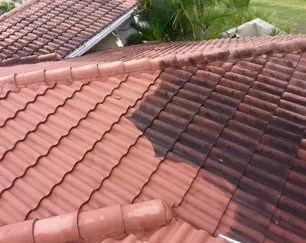 roof cleaning tile and shingle roof