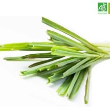 Huile Essentielle de Palmarosa bio (10 ml) - Abiessence