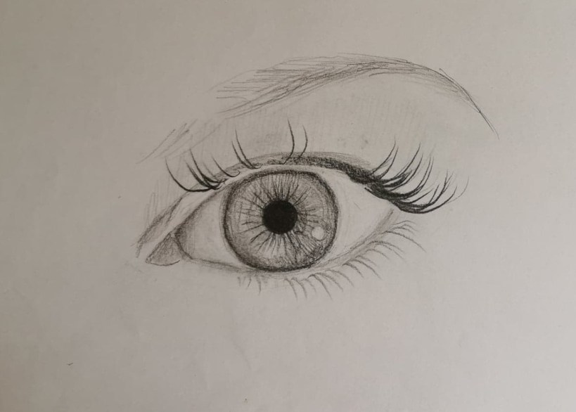 Construction iris dessin oeil réaliste