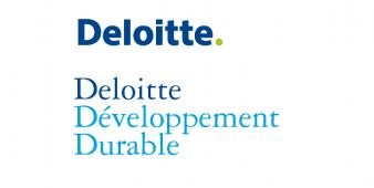 Read more about the article Interview d'un Consultant junior en Développement Durable
