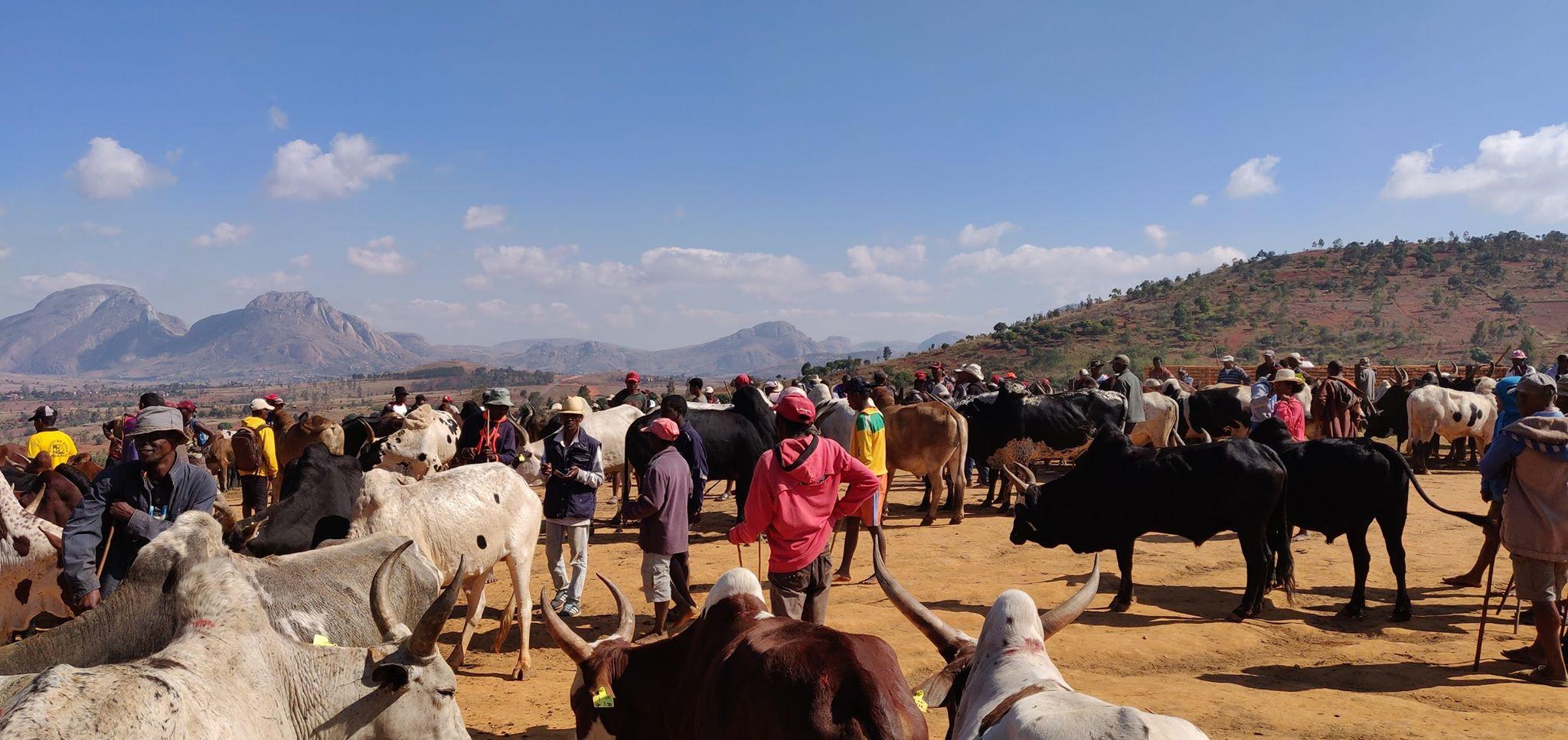 "MISI Madagascar 2019 -Les ""vazahas"" à Madagascar"