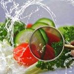 Révélations insolites sur notre alimentation