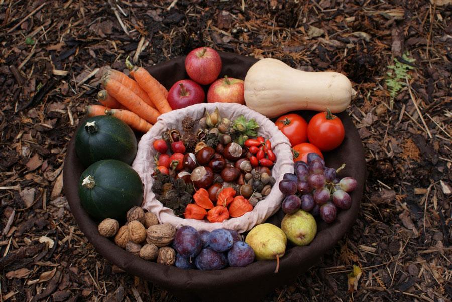 potager récoltes et semis septembre octobre