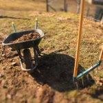 Préparer son sol potager à l'automne