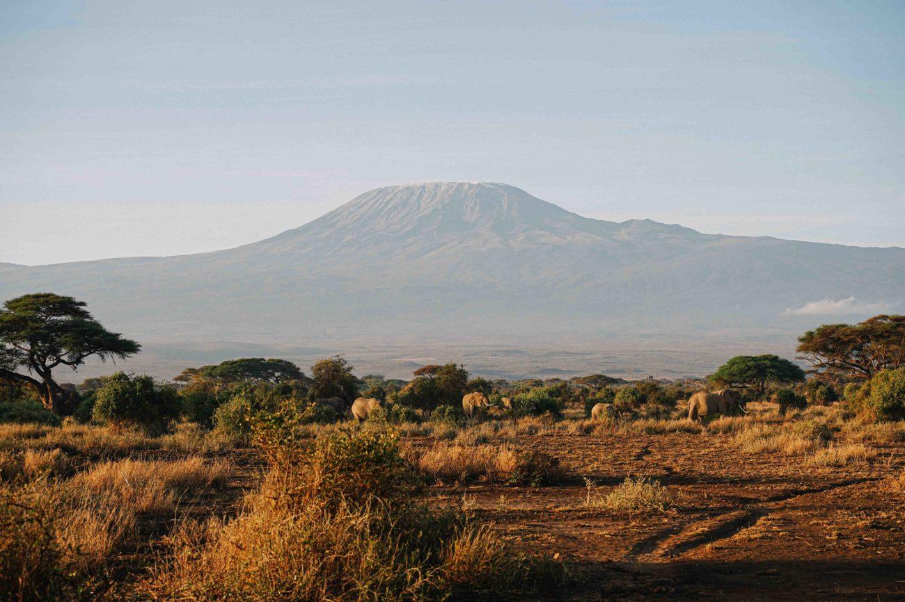voyage au kenya, amboseli