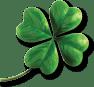Happy St Patricks Day - le reve spa