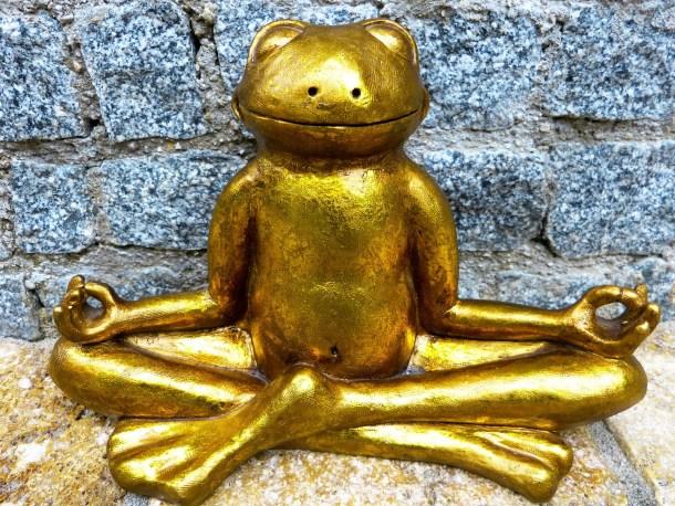 méditation, relaxation, bien-être, grenouille