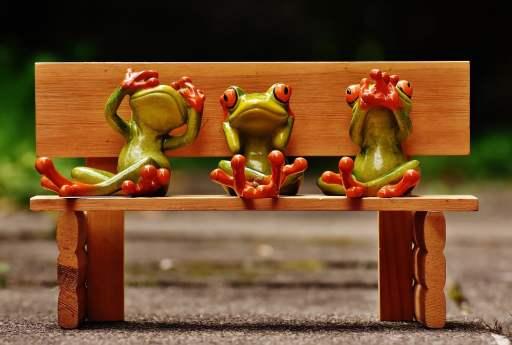 Kermit à l'école : neurodiversité, différents apprentissages
