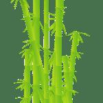 Protège matelas bambou