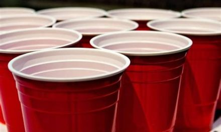 Les toulousains, amoureux du beer pong ?