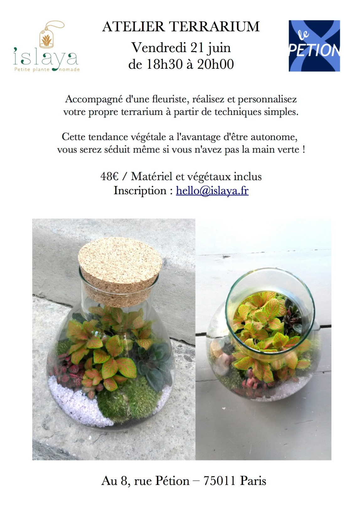 Atelier terrarium au 8 Petion le 21 juin
