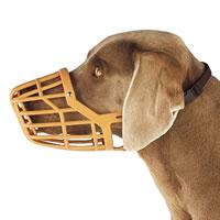 Basket Muzzle