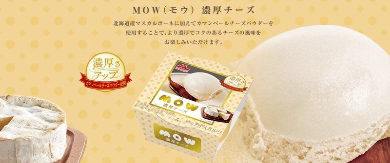 MOW-ICE