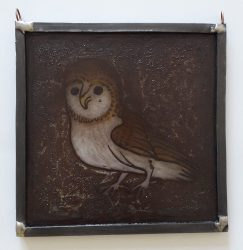 FC007 dark owl white