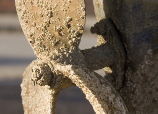 Propeller with barnacles