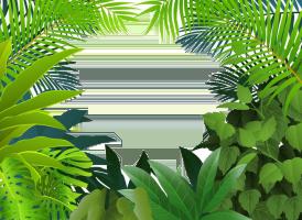 Rainforest World Icon