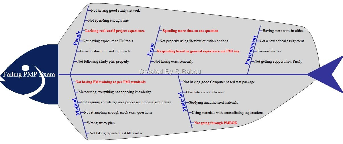 pmp inputs and outputs diagram gfs lil puncher wiring fishbone a project management tool