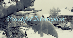 beautiful interruption